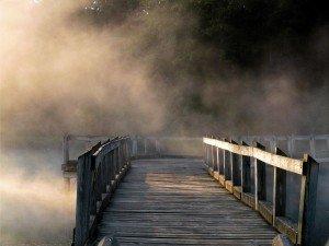 bridgw fog